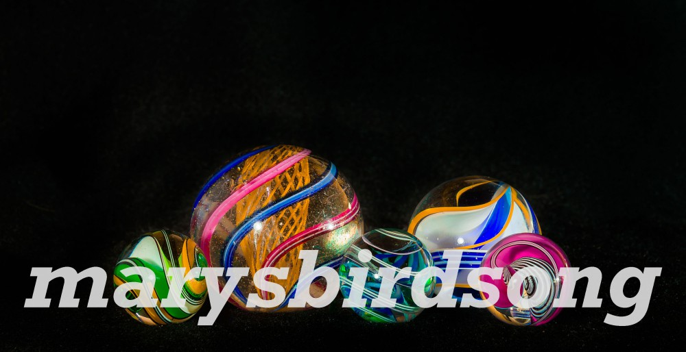 marysbirdsong