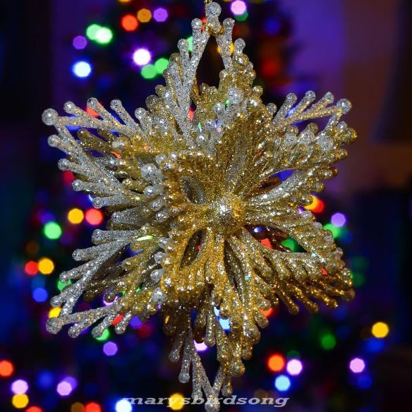 sparkly star001