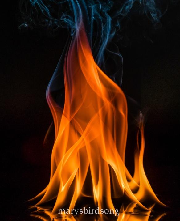 fire1blog-copynamesize