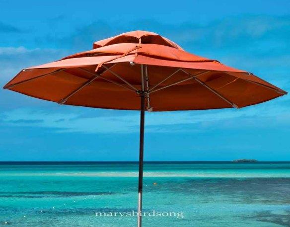 umbrellawith-orangefloatnamesize